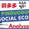 Das am schnellsten wachsende E-Commerce Unternehmen der Welt? PinDuoDuo Aktie: Chinas neue Nr. 3 nach Alibaba und JD.com